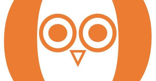 ¿QUÉ ES OWL THERAPY?